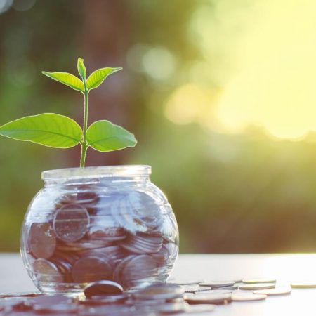 Accelerate Financial Is Planting Trees in Exchange for $$ Invested in Its BTC ETF